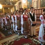 Прослава Видовдана у Шиду