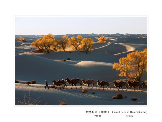 28 大漠驼铃 李强
