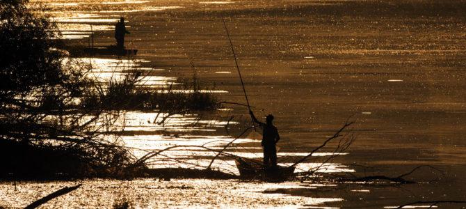 НАЈАВА: Изложба фотографија са Првог фото сафарија на Бодрог фесту