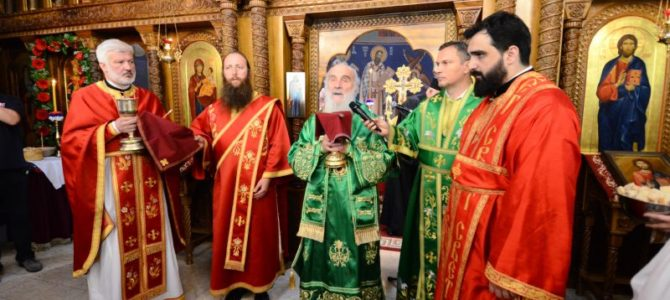 Беседа патријарха Иринеја о Светом Јовану Владимиру