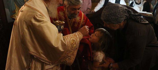 Патријарх Иринеј: Свети Јован – старозаветни пророк и новозаветни апостол!