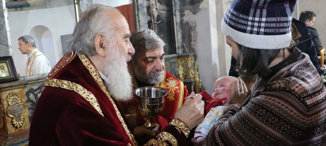 Слава Николајевске цркве у Земуну
