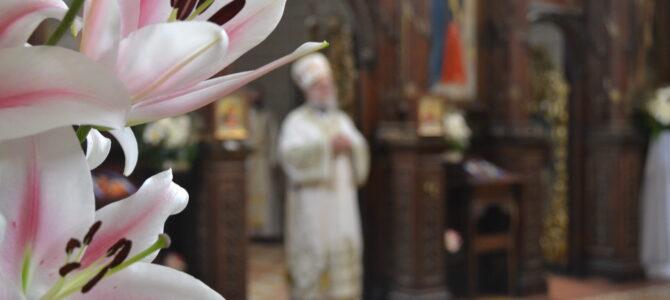 """Најава: """"У захвалност Светом Сави"""" – Епископ сремски г. Василије беседи на свечаној академији у Руми"""