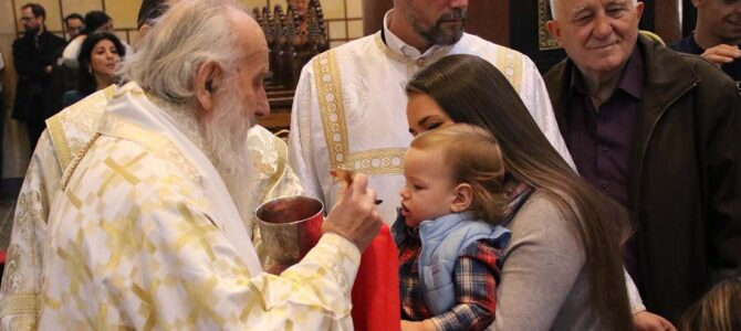 Најава:  Патријарх српски г. Иринеј богослужи у манастиру Раковица